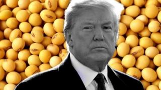 Acord comercial SUA - UE. Trump vrea să vândă în Europa gaze și multă soia!
