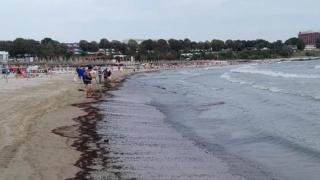 ULTIMA ORĂ! LIBER la scăldat, la plaja Mangalia (zona Laguna)!