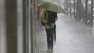 Ploi abundente la Constanța! Unde apelezi dacă ai probleme