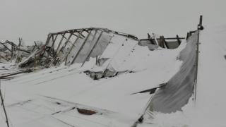 Urgia albă a distrus solariile şi a calamitat culturile