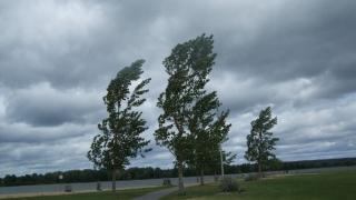 Dobrogea, sub cod galben de vânt puternic!