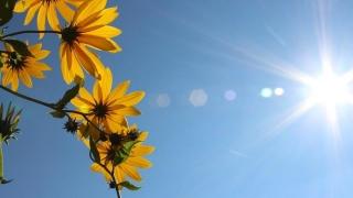 Vara va fi toridă şi secetoasă în toată ţara