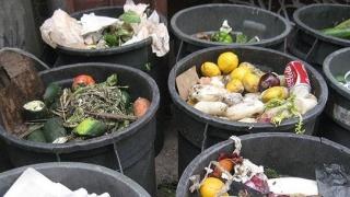 Verificări la colectarea și depozitarea deșeurilor alimentare! Ce s-a găsit?