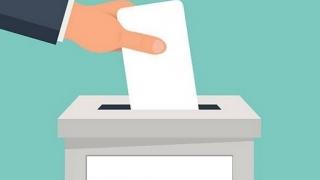 AEP: 835 de secții de votare pentru Diaspora