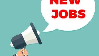 Vrei să lucrezi în administrație? Primăria Constanța face ANGAJĂRI MASIVE