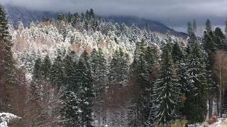 Fenomenele specifice iernii continuă. Când scăpăm de ninsori