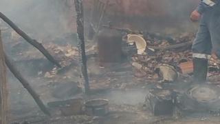 Saivan cu animale, cuprins de flăcări la Topalu