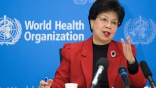 Virusul Zika declarat urgență globală de sănătate publică