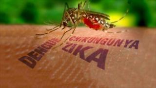 Al doilea cetățean român infectat cu virusul Zika