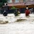 Mai multe gospodării au fost inundate în urma ploilor torenţiale