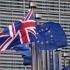 Liberalii britanici promit reintegrarea Marii Britanii în UE la următoarele alegeri