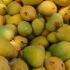 2.000.000 de kg de mango în exces, în Filipine! Ce s-a întâmplat