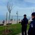 Jandarmii constănțeni au aplicat peste 100 sancțiuni în ultima săptămână