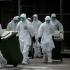 Germania eutanasiază zeci de mii de păsări din cauza gripei aviare