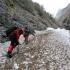 Trei tineri blocați pe un perete muntos, la peste 2.000 de metri în Bucegi