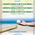 Campionatul Național de oină pe plajă pentru junioare I, II și III
