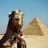 Ajutorul financiar de la SUA pentru Egipt, blocat. Iată din ce cauză