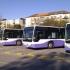 Șoferii de autobuz din Timișoara, la cursuri pentru brevetul de marinar