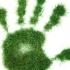 APM Constanța anunță noi reglementări cu privire la autorizația de mediu