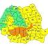 Cod galben de furtuni în Dobrogea
