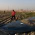 Avionul ucrainean prăbuşit în Iran, doborât de rachete ruseşti