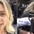 Jurnalistă bătută cu ouă şi cu pumnii, la un protest, în timp ce transmitea live
