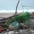 Marea Neagră a ajuns cea mai poluată din Europa