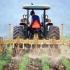 Creditele pentru fermieri, aprobate în 24 de ore!