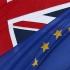 """În UE se va discuta o aderare automată post-Brexit a unei """"Irlande unite"""""""