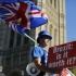 Britanicii vor înapoi în UE?