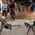 19 morţi în Filipine, după confruntări cu grupări afiliate SI