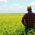 Adeverințe pentru fermierii care vor să ia credite