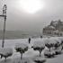 A înghețat marea la mal! Imagini spectaculoase din Constanța!