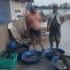 Calcan braconat, confiscat de poliţiştii de frontieră