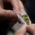 Canabisul, cel mai consumat drog din România. Care sunt efectele