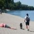 Canicula a făcut 70 de victime în Quebec
