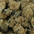 Arestați, după ce au primit un colet cu kilograme de droguri de mare risc