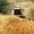 Bătălie cruntă pe fondurile din agricultură