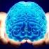 Ce are special creierul persoanelor nevăzătoare?