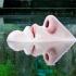 Clima influențează forma nasului