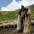 Colțul Troll-ului - Oferta ANAF pentru țărani violenți: bâtă, semințe și blugi chinezești