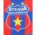 """CSA Steaua Bucureşti solicită daune în valoare de 36.826.310 euro pentru folosirea mărcii """"Steaua"""""""
