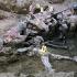 Dezamăgire în Bosnia: Olanda, parțial vinovată pentru masacrul de la Srebrenica