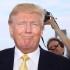Donald Trump, suspectat de fraudă fiscală