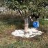 Comoara din piatră! Un zăcământ extrem de rar, doar în România