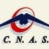 Foști șefi ai CNAS, urmăriți penal! Prejudiciu de 16 milioane de euro!