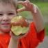 Fructe, legume, produse lactate și de panificație, în meniul elevilor