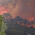 Incendii de vegetație în Israel