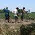 Cine strică piața muncii? Peste 1,5 milioane de români lucrează la negru