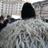 Ciobanii se pregătesc de noi proteste